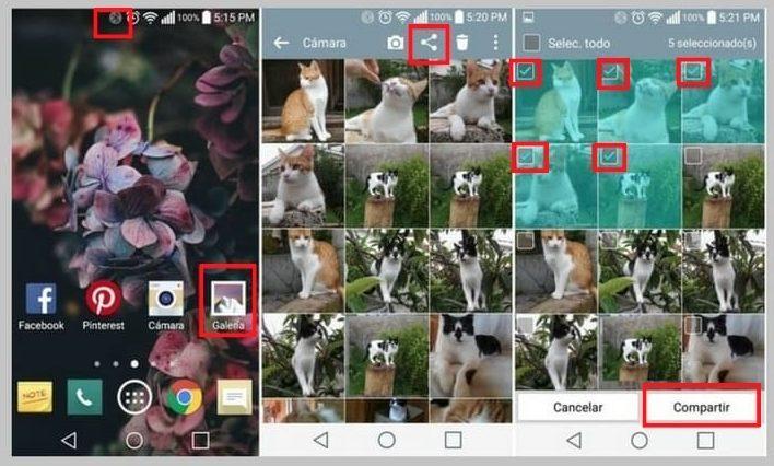 descargar fotos del celular a la pc