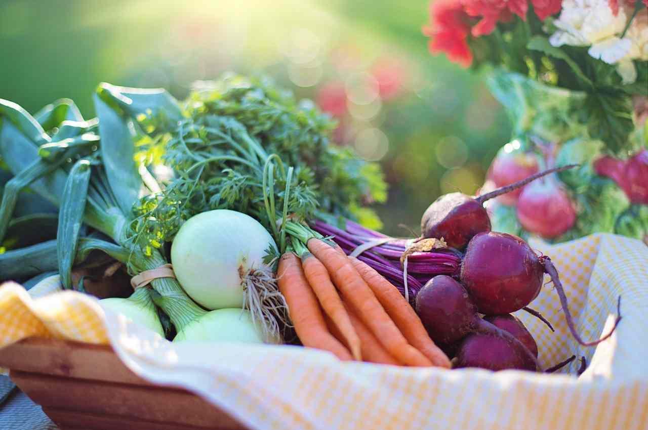 alimentos saludables para una dieta sana